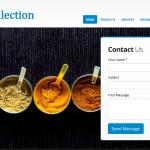 Web Designing and SEO Company in Malviya Nagar - Delhi - ICO WebTech Pvt Ltd