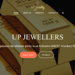 Jewellery Web Designing and SEO Company in Malviya Nagar - Delhi - ICO WebTech Pvt Ltd