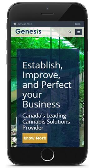 Mobile Web Design for business website Canada - ICO WebTech Pvt Ltd